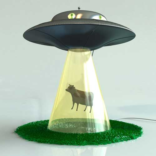 Abduction Lamp Cow