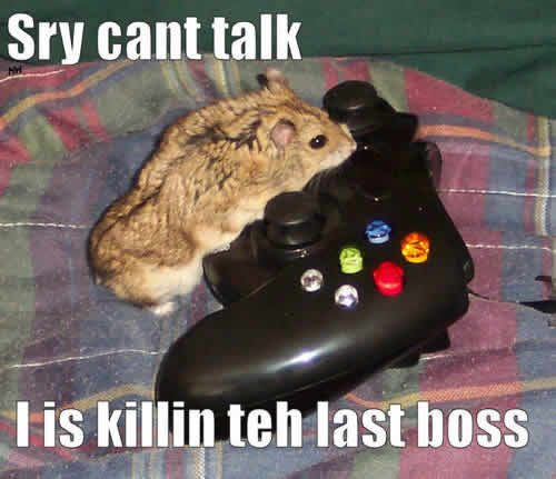 Sry cant talk - killin teh last boss