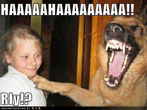 Haaaaaaaaaa! Rly!?