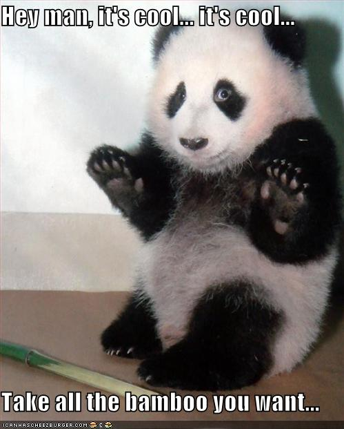 bamboo-cool