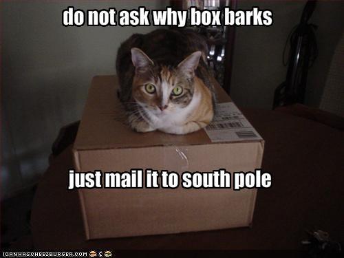 box barks