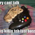 Sry cant talk – killin teh last boss
