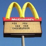 Yes you can has cheesburger