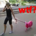 Pink sheep emo?