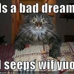 I hads a bad dream