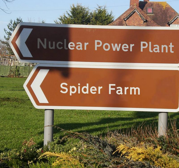 nuclear spider sign