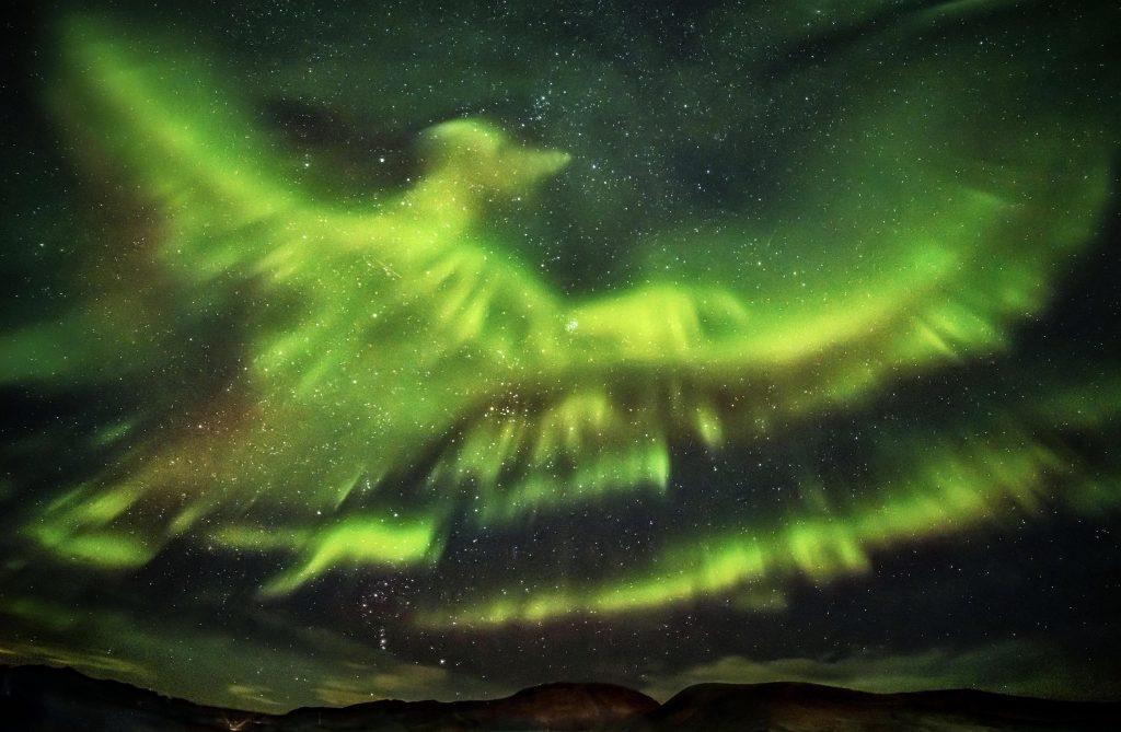 Giant Phoenix Aurora Borealis
